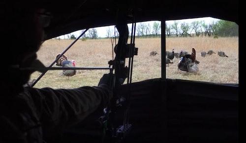 Greg Clements of The Hunting Public draws as a Kansas tom struts toward his gobbler decoy.