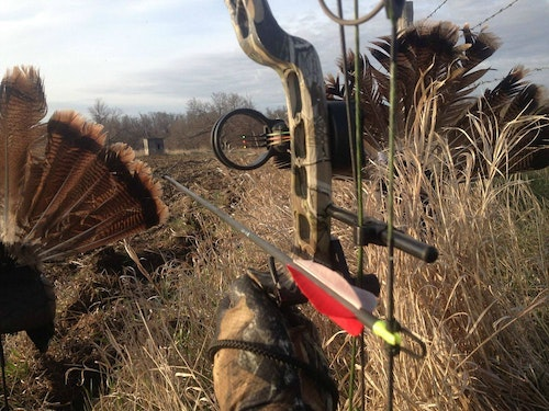 Here's the author's view as he looks between the two Primos decoys. Ideally, birds will approach in a line directly toward these decoys. Shots are almost always head-on, which is perfect for a bow.