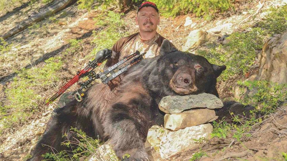 DIY Black Bear: Start Planning Today!