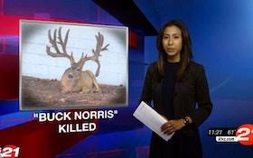 """VIDEO: Legendary Mule Deer """"Buck Norris"""" Killed"""