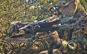 Axis Deer: The Best Value in Bucket List Bowhunts