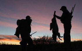 Dark Knight Coyote Hunting Strategies