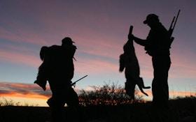 Caliber Debate: Readers Respond With Favorite Predator Rifles