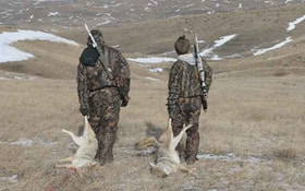 Find The Right Predator-Hunting Partner