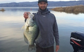 California's New State Record Black Crappie?