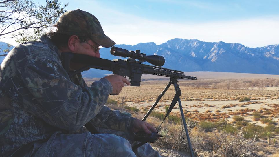 How to Hunt Desert Predators