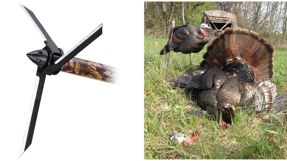 Turkey Hunters: Top 3 Reasons to Shoot a Magnus Bullhead Broadhead