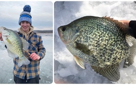Ice Fishing Tip: Target Big Crappies With Big Lures
