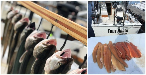Fresh fillets are a welcomed bonus to an outstanding day of charter fishing on Lake Superior.