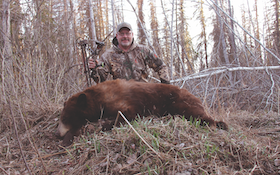The Best Places to Hunt a Color-Phase Bear