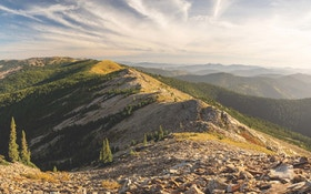Conservation Corner: Keeping Reeds Ridge United