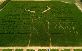 Deer-Themed Corn Maze