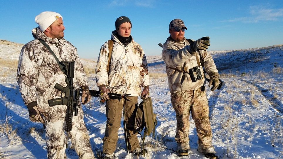 Coyote Craze College offers higher education for hunting songdogs