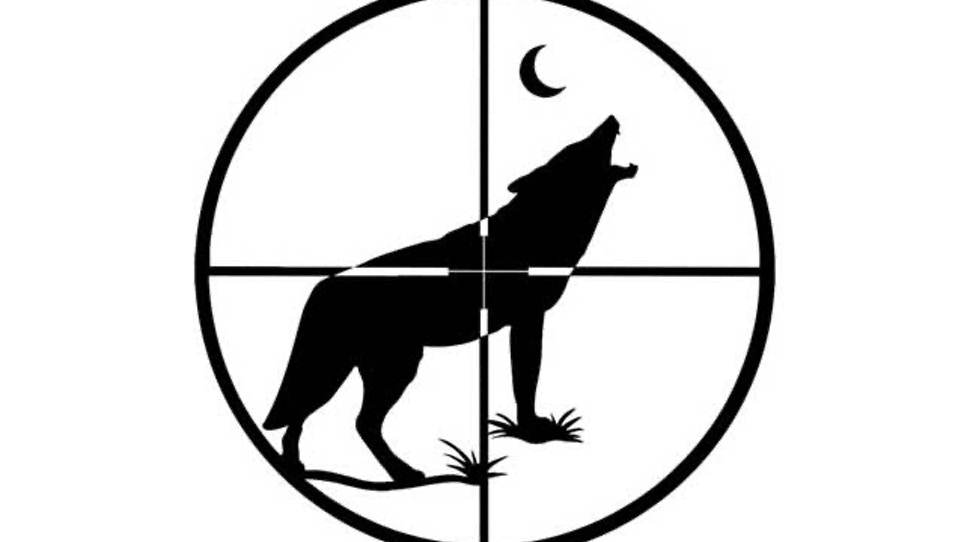 21 coyotes, no wolves shot in disputed Idaho derby