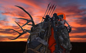 Have Crossbow Success During Firearm Hunting Seasons