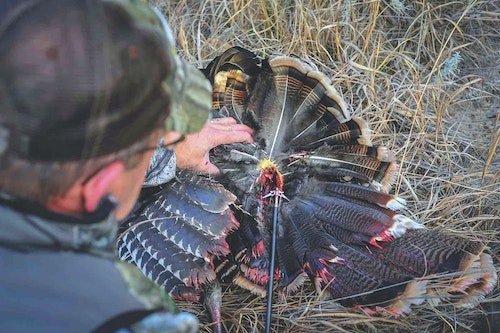 Whether you prefer fixed or mechanical broadheads when crossbow hunting, the author suggests using a heavier broadhead to cut through and penetrate the hollow bones and thick feathers of turkeys.