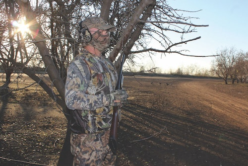 Setting up on a known flyway is a great way to intercept crows as they travel from roosting sites to feeding areas. Here, the hunter uses a tree to break up his outline with the sun at his back.