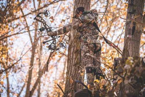 Treestand hunters are best served with an easy-drawing and quiet compound bow.