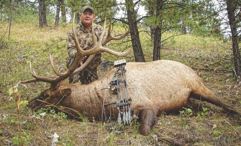 3 Elk Experts Reveal Their Secrets to Bowhunting Success