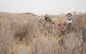 Bowhunting Open-Country Whitetails