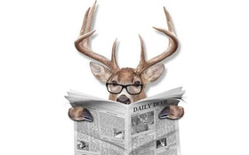 Minnesota Hunter Steals Other Hunter's Deer