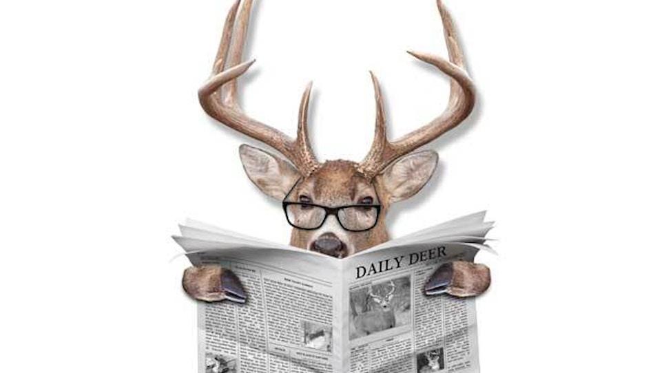 Deer disease now being found in some North Dakota cattle