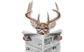 2 men arrested after deer decoy shooting, pursuit