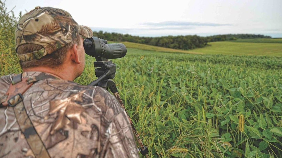 Quick Tip: Fill-in-the-Blanks Summer Deer Scouting