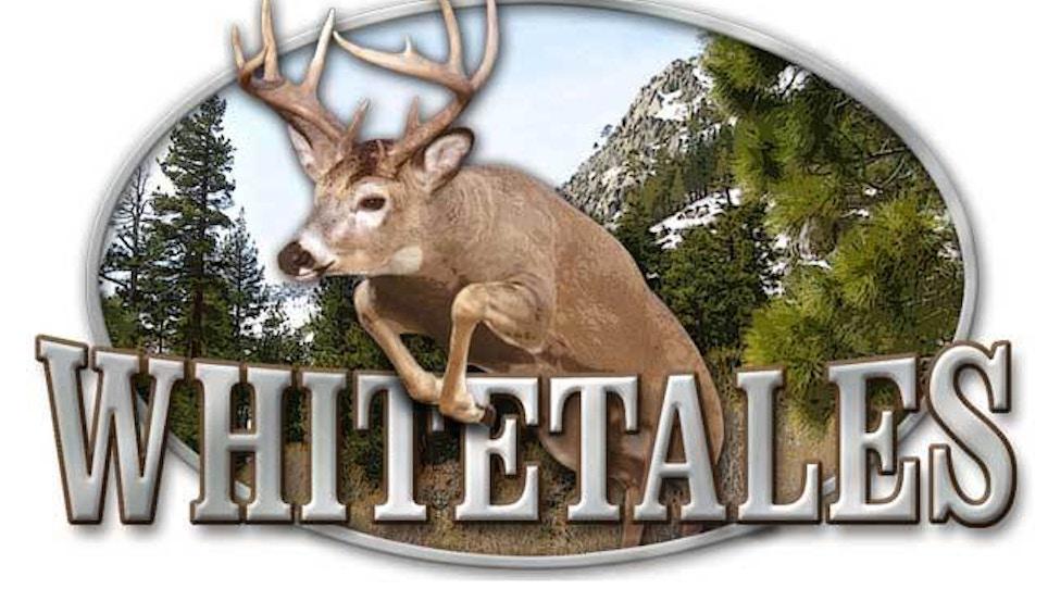 Near record number of deer taken in Arkansas