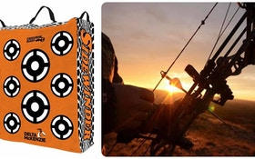 Delta SideWinder Bag Target