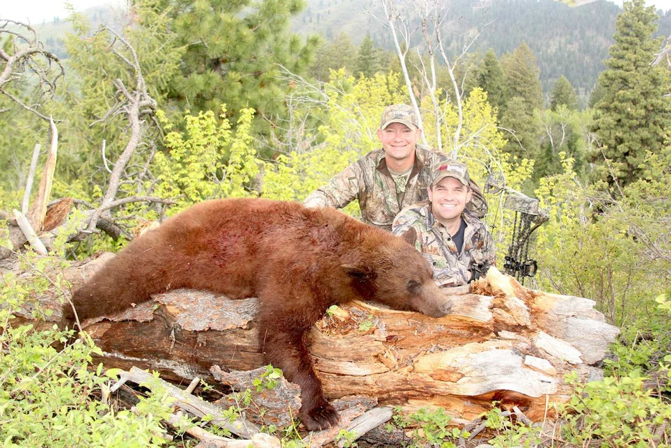 Our Best and Worst Stories: Derrick Nawrocki's Bear and Bust