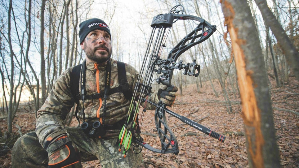 3 Great Whitetail Draw States: Strategize Now!