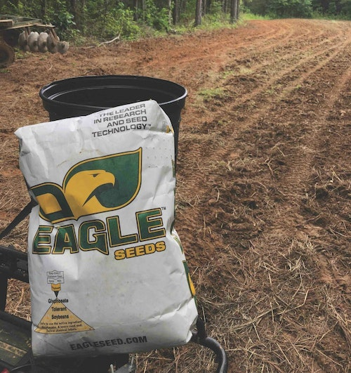 These Eagle Seed forage soybeans are a great crop for summer nutrition. The leaves contain 25 to 30 percent protein, and because it's glyphosate tolerant, the entire plot can be sprayed with glyphosate to kill all grass and broadleaf weeds in the plot.