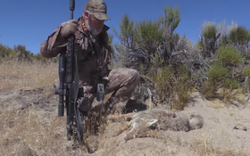 VIDEO: What Happens in the Desert on FOXPRO Hunting TV?