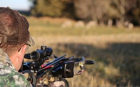 Crossbow Hunters: Which Factors Dictate How Far You'll Shoot?