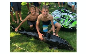Video: 6-Foot Sturgeon Lassoed by Two Minnesota Boys