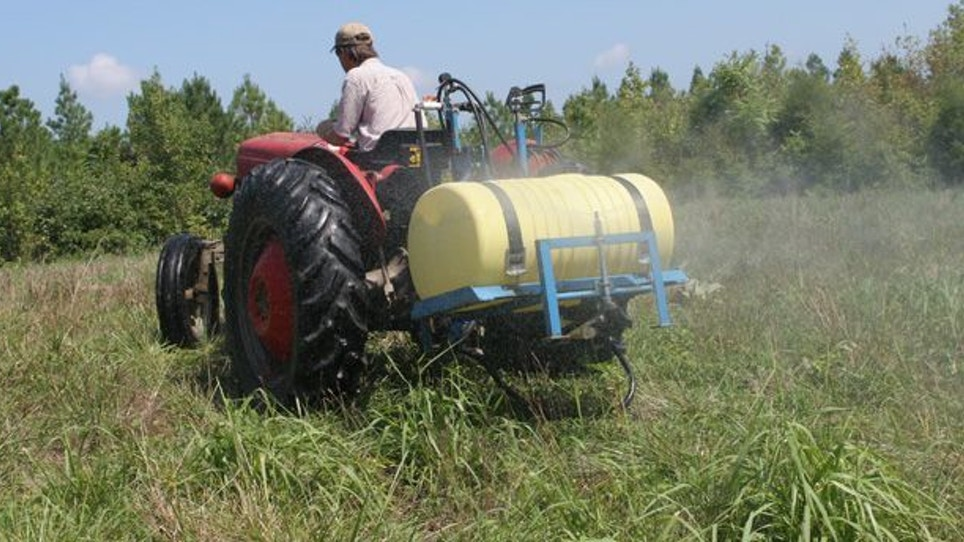 Winning the War With Food Plot Weeds