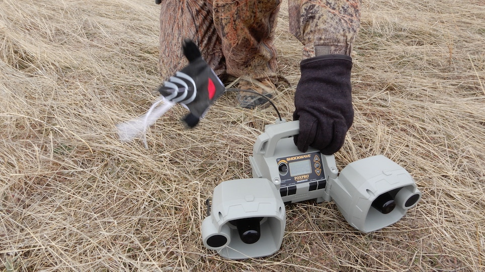Pros and Cons of Using Predator Decoys