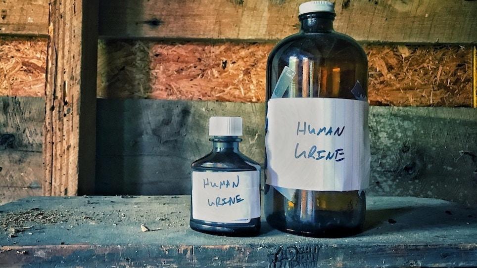 Does human urine scare deer?