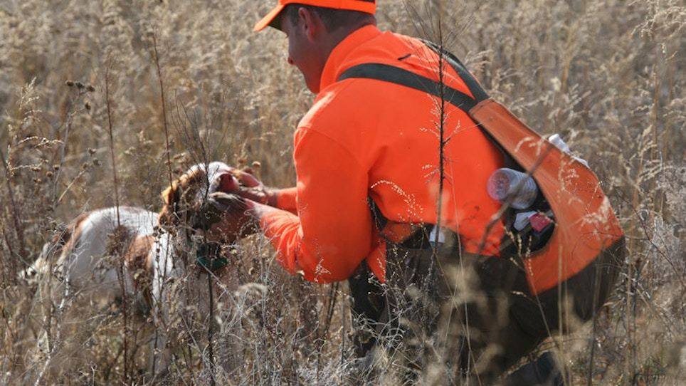 The Best Shotguns, Chokes And Loads For Hunting… | Grand View Outdoors