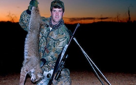 Harsh Winter Puts Proposed Bobcat Trapping Season On Hold