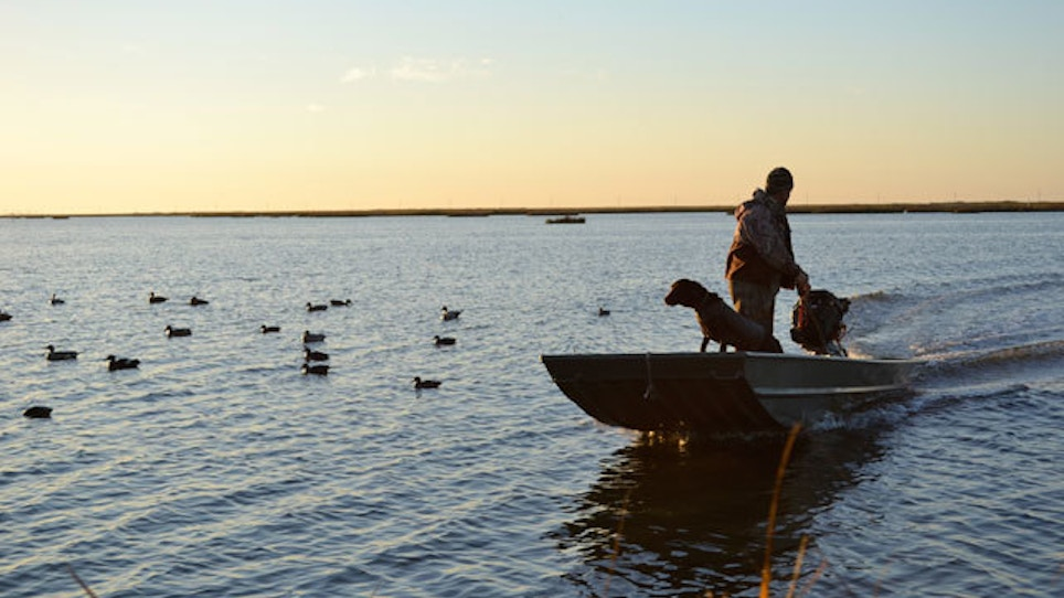 Duck-Hunting Myths — Busted