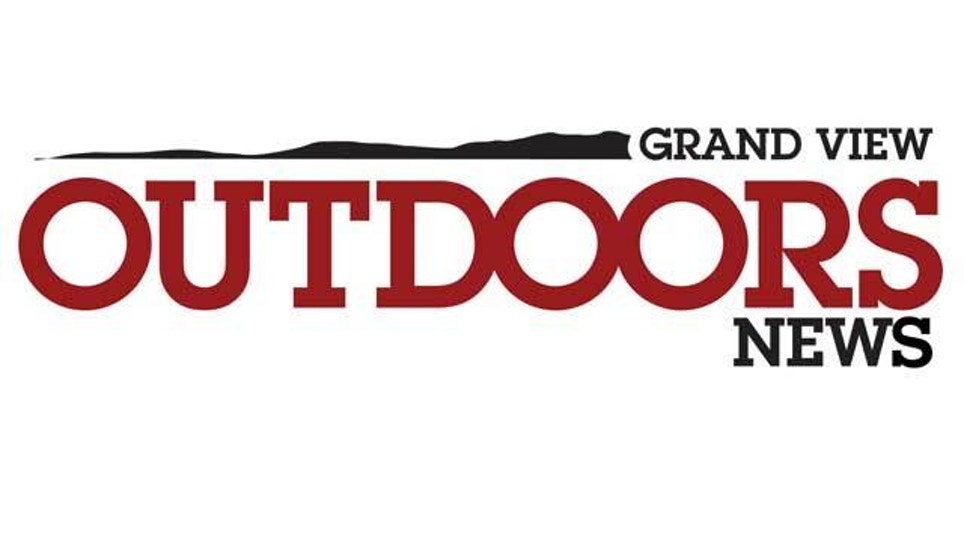 DNR predicts successful Michigan deer hunting season