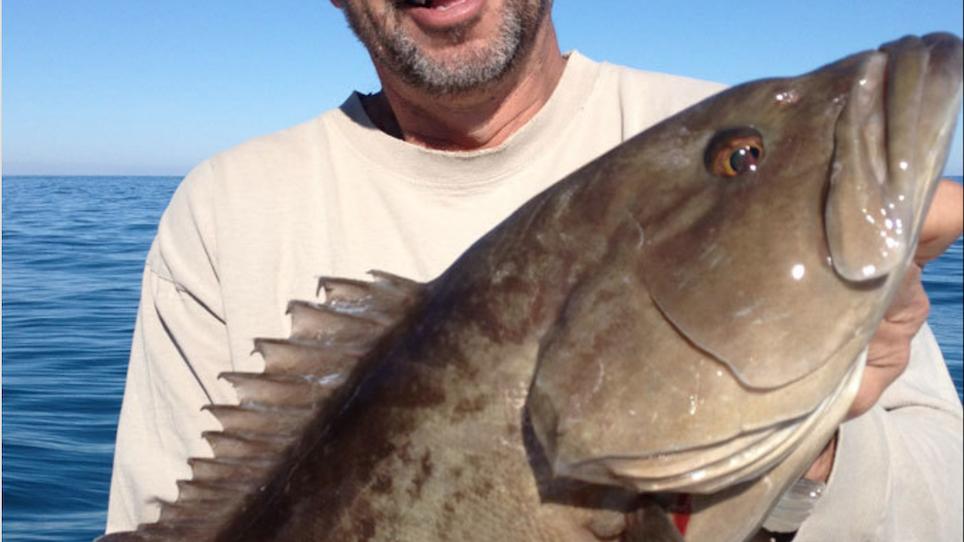Gag Grouper Season Open in Certain Florida Counties