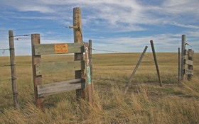 Public Land: Finding Room to Roam