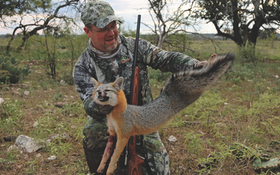 Try Hunting the Texas Deer Rut for Predators