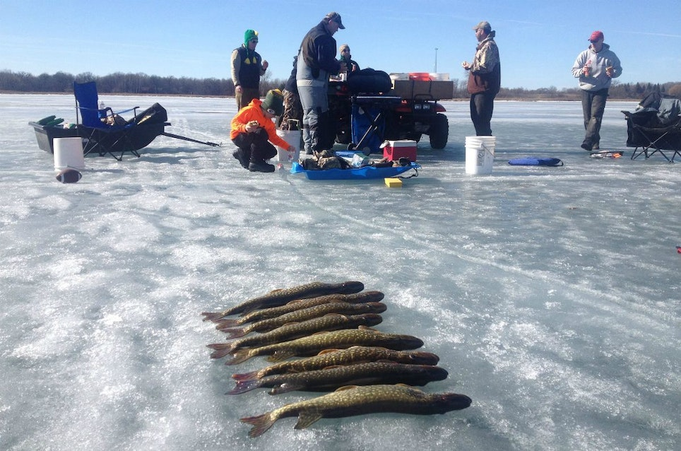 When the pike are biting fast, a group of ice anglers can go through a lot of minnows during a day of tip-up fishing.