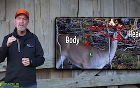 Video: What's Best for Bowhunters? Deer Head Up or Down?