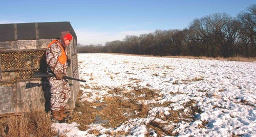 How you plan on hunting a plot will help to determine what to plant, when to plant, and ultimately when to hunt it. With careful design, you can create a killer food plot to coax deer to gun or bow range.
