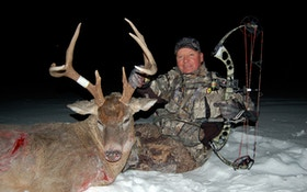 Late season bow buck food stands
